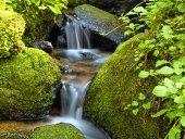 Zengarten-Wasserfall